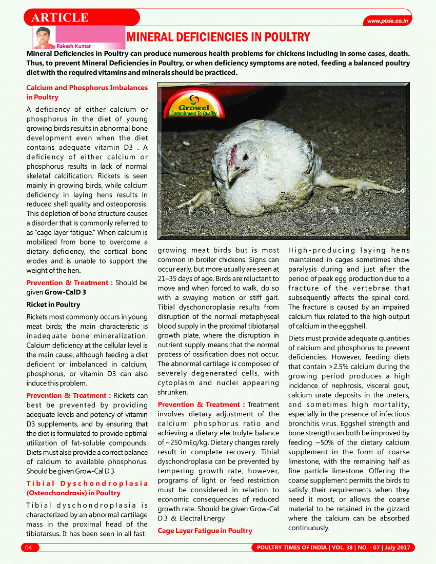 Minerals Deficiencies in Poultry