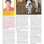 New Born Calf Health Management