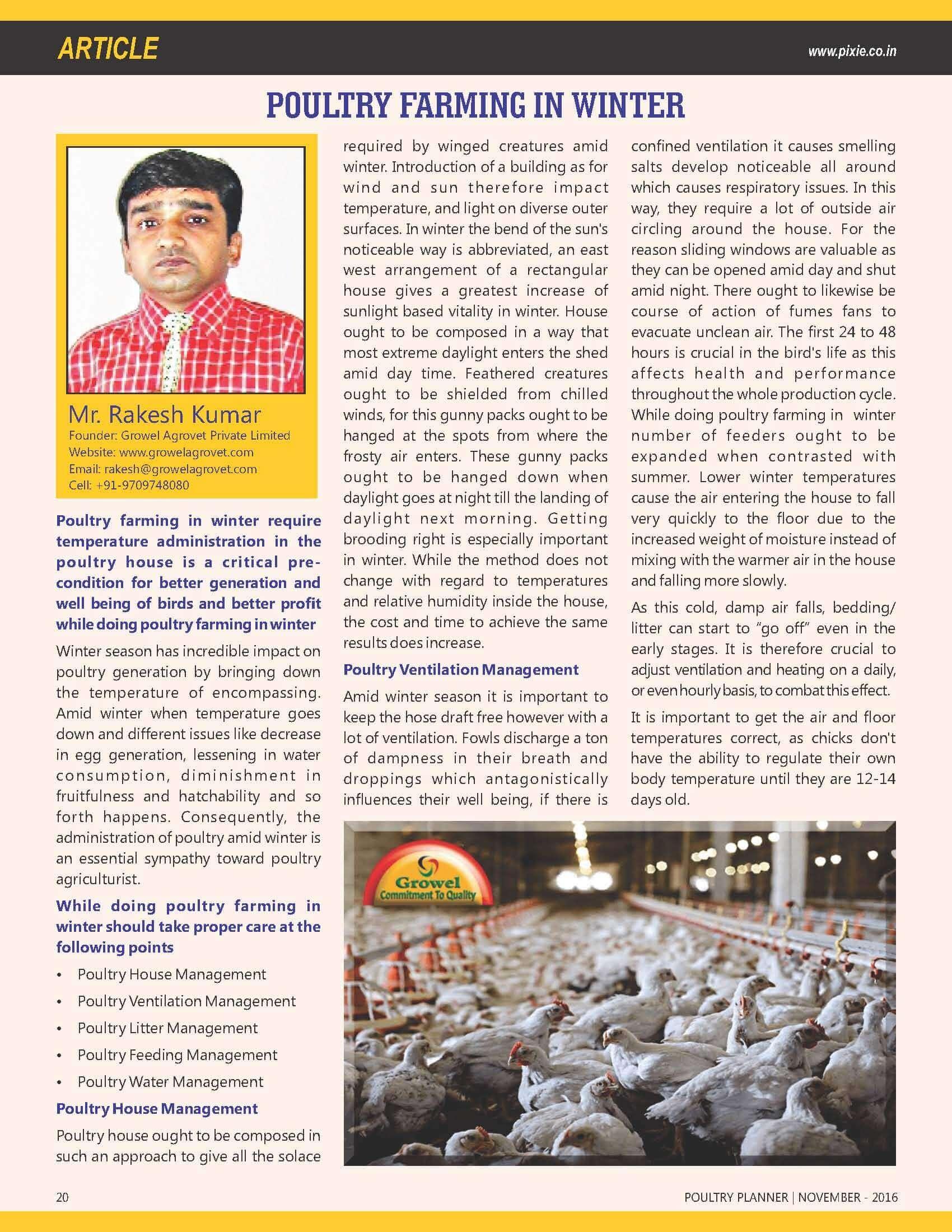 Poultry Farming in Winter