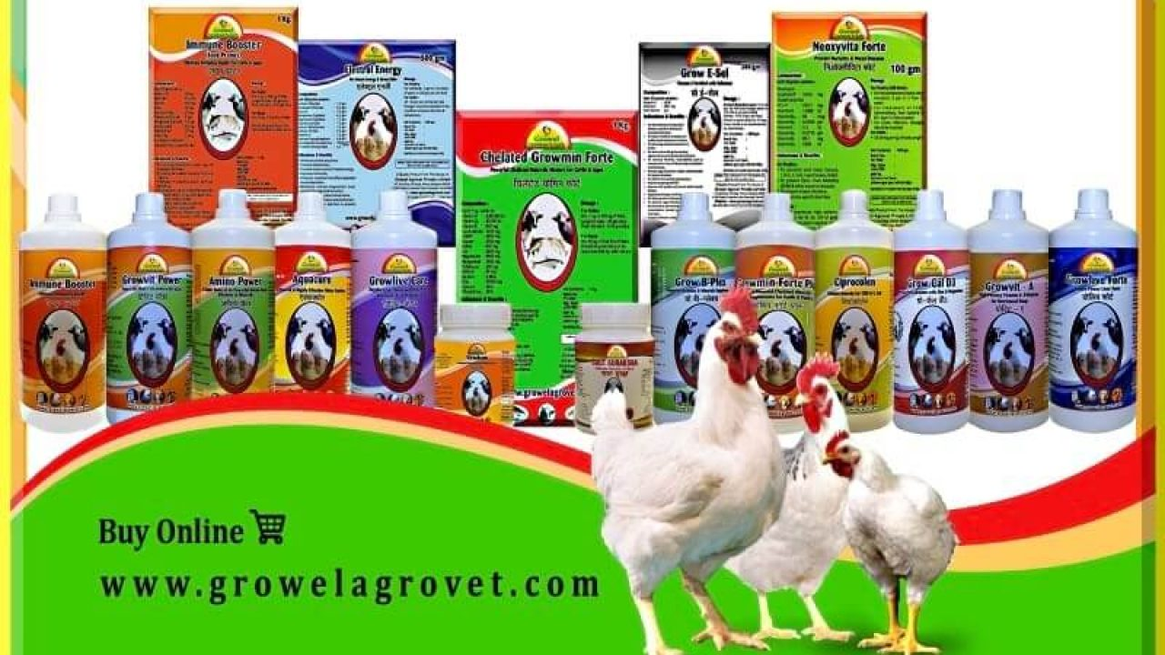 Broiler Poultry Medicine Schedule Chart – Growel Agrovet