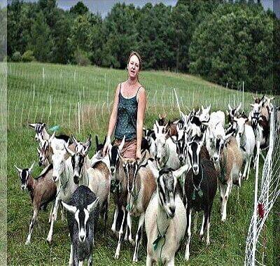 Goat & Sheep Farming Guide
