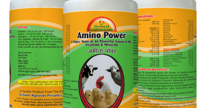 Amino Power -Poultry feed supplements ,cattle feed supplements, poultry growth promoter