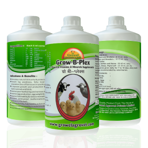poultry vitamin-b complex, animal vitamin, vitamin and minerals for poultry