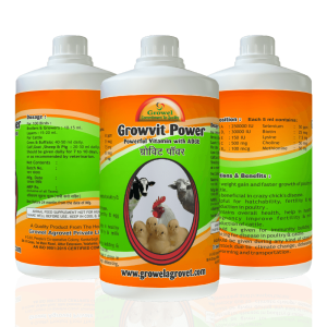 multi vitamin for poultry, cattle vitamins, veterinary vitamins