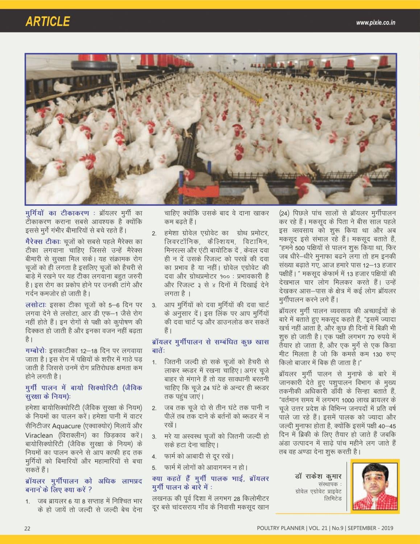 ब्रायलर मुर्गीपालन कैसे करें
