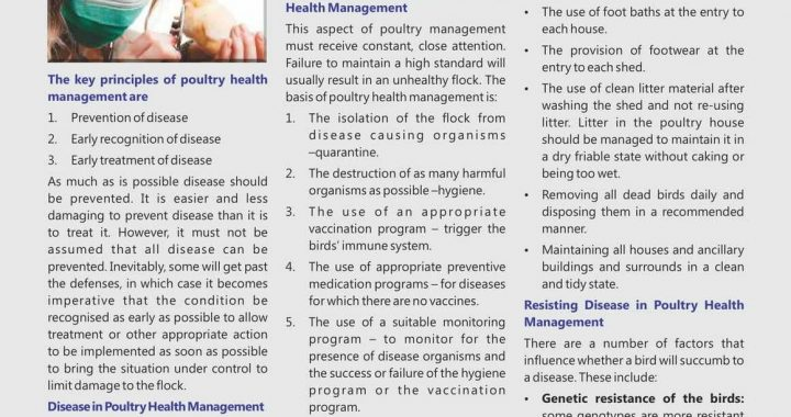 Poultry Health Management Principle & Practice