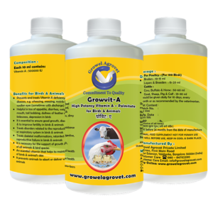 Vitamin -A Palmitate for Poultry