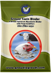 A Broad Spectrum Mycotoxin Binder with Feed Acidifiers