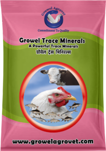 Trace Minerals for Poultry
