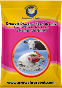 Vitamins Feed Premix for Broiler, Breeder & Layer Poultry